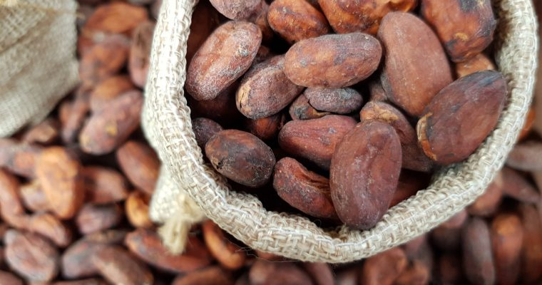 Substitutes for Cocoa-What can I use instead?