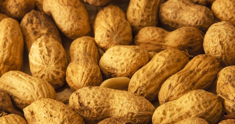 Substitutes for Peanuts – What can I use instead?
