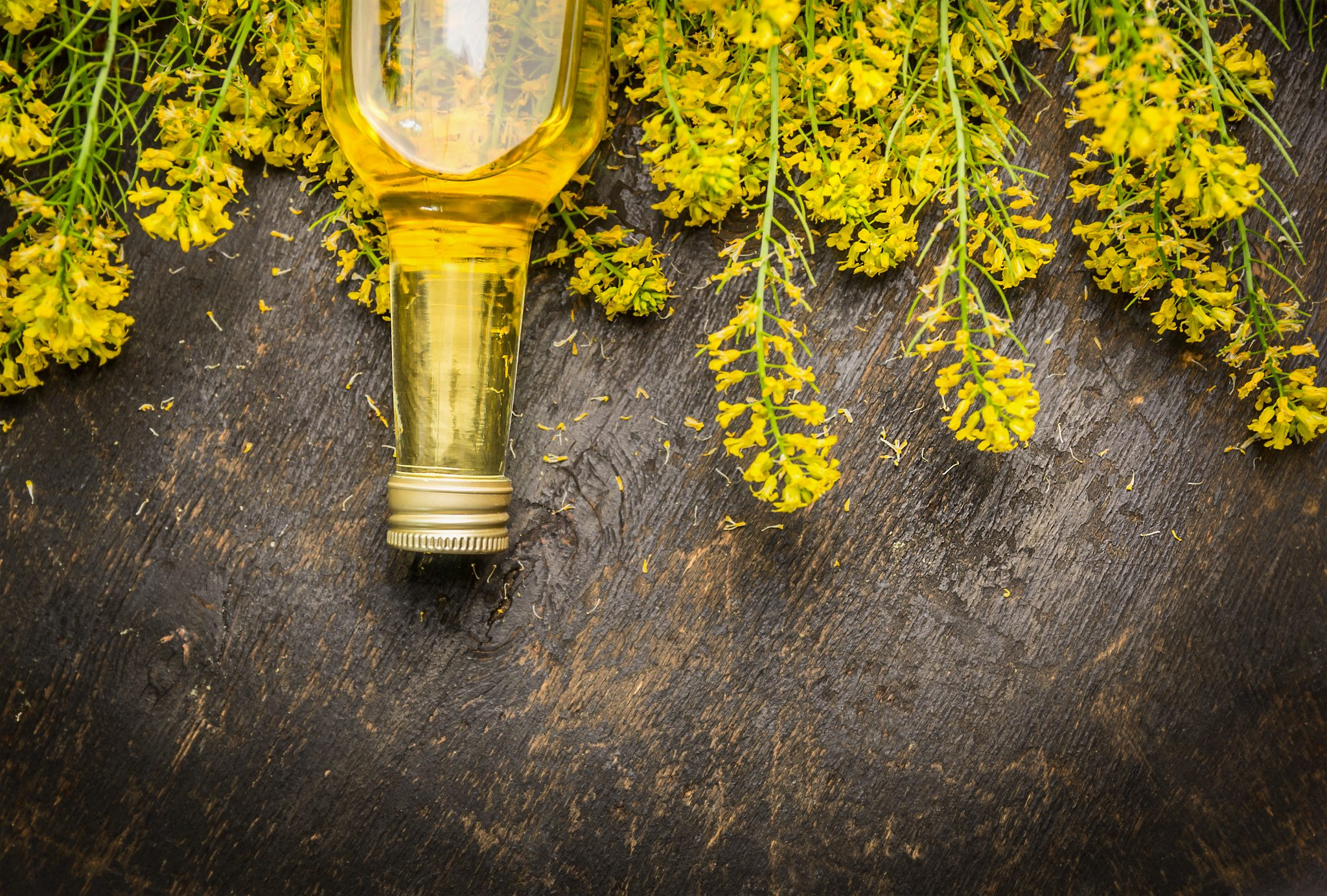 How Long Does Canola Oil Last? Can It Go Bad?