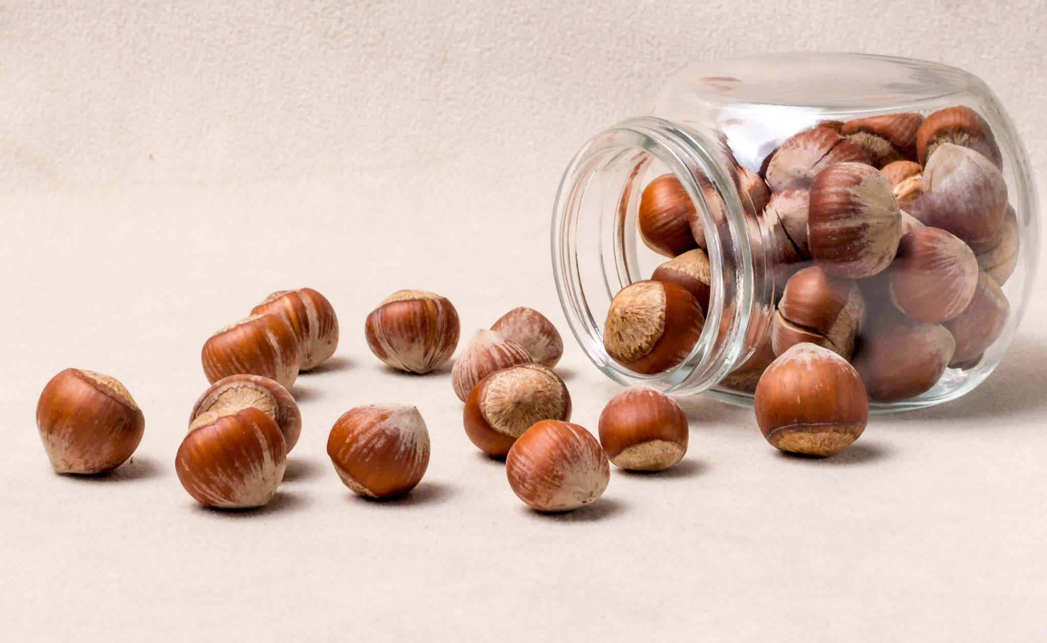 How Long Do Hazelnuts Last? Can They Go Bad?