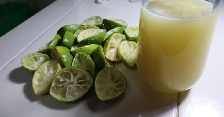 How Long Do Limes Last? Can They Go Bad?
